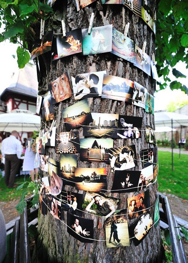Der Fotobaum - Eine Fotogarlande mal anders