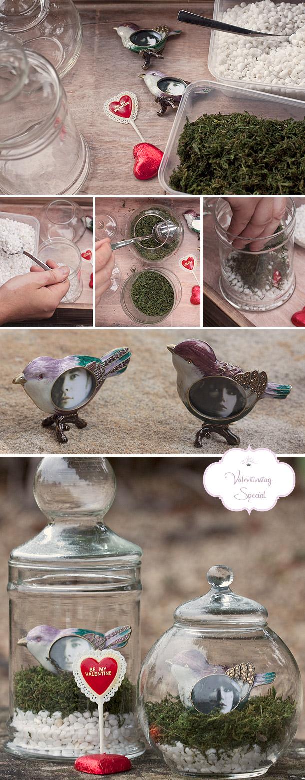 DIY Liebesnester aus Moos selbstgemacht