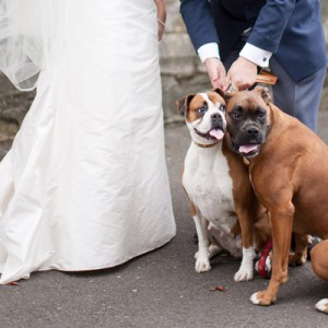 Herbstliche Hochzeit bei Lisa O'Dwyer Photography