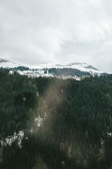 Winterhochzeit in den Bündner Bergen von Valentina Verdesca