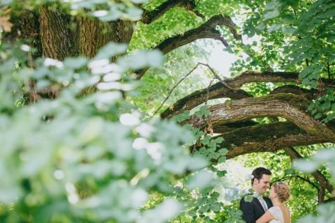 Romantische DIY-Gartenhochzeit von Sequence Five