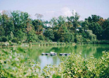 Verträumte DIY-Septemberhochzeit im Teichhaus Bad Nauheim