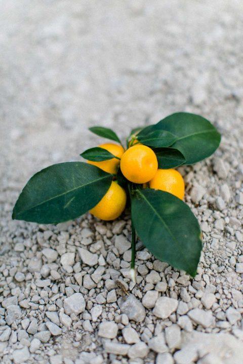 Fruchtig zitronengelbe Sommerhochzeitswelt
