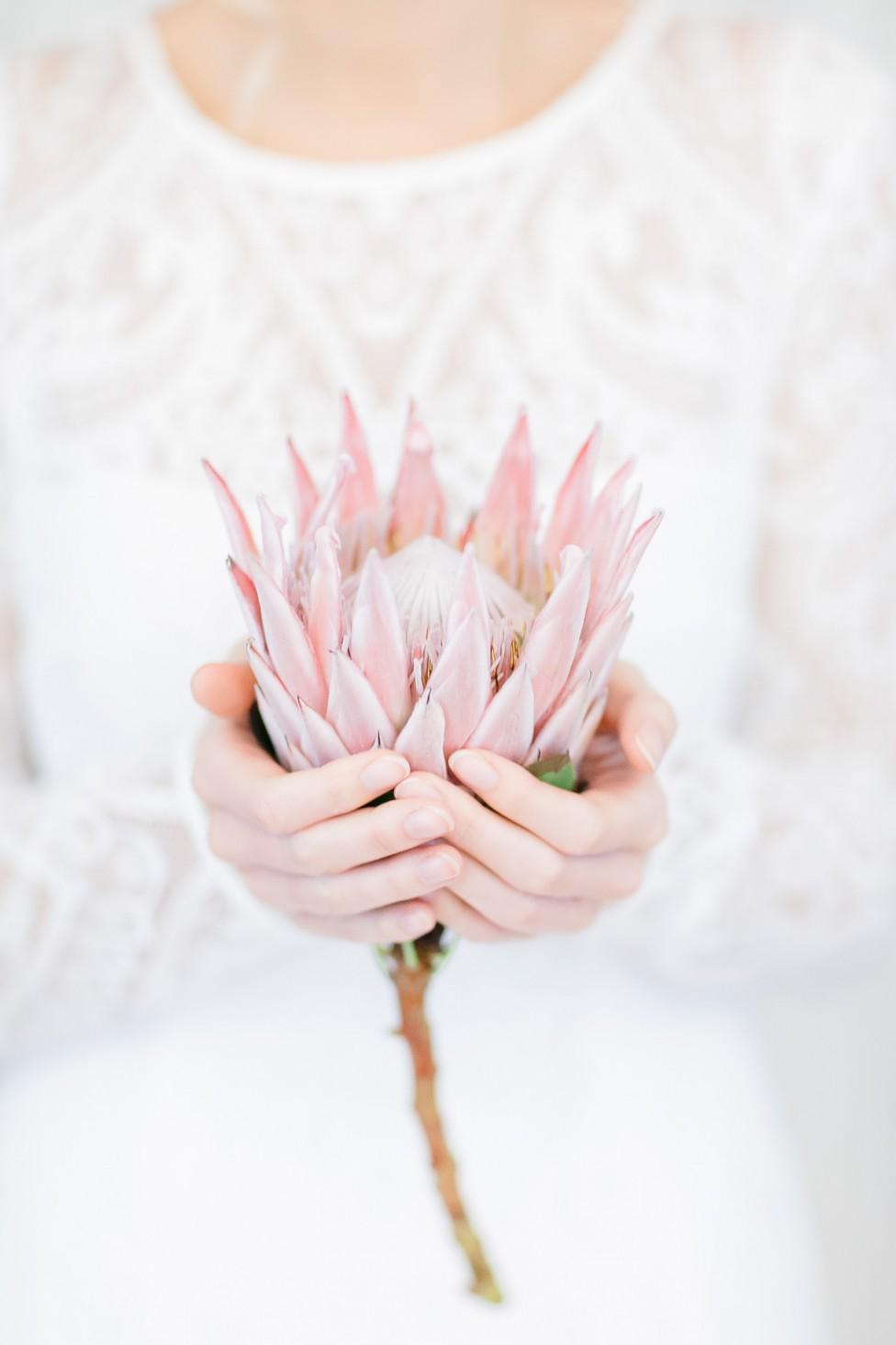 Die Frühlingsbraut – mehr Zauber geht nicht!