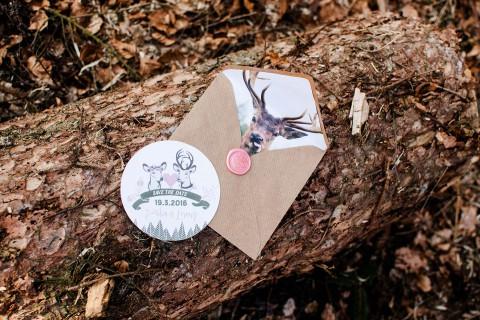 Into the Woods: Moderne Waldromantik