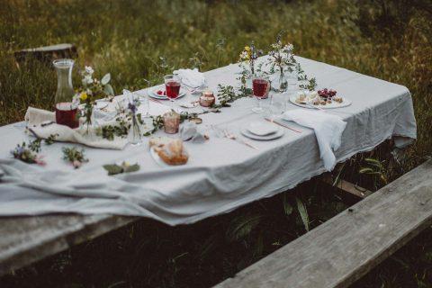 Hochzeits-Picknick in den Redwoods