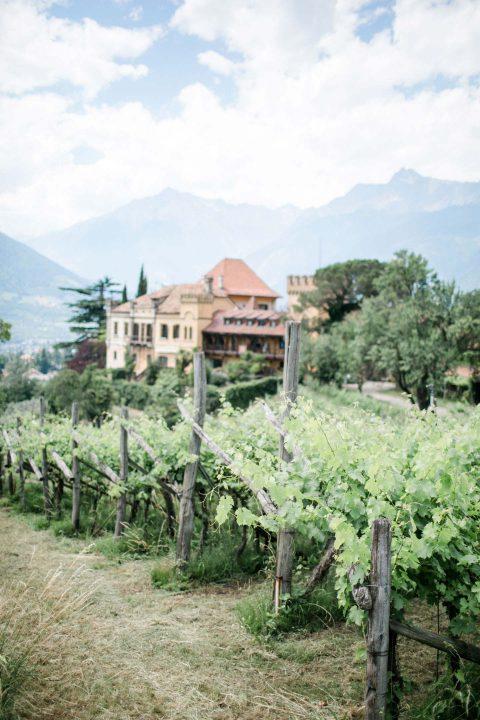 Landhochzeitsinspiration & Greenery-Charme
