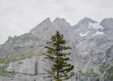 Chi & Sam: Romantische Sommerhochzeit am Blausee