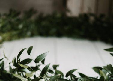 Moderne Mittsommer-Hochzeit im Grünen