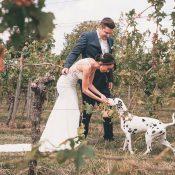 Weingut Idler: Julihochzeit mit Dalmatinern