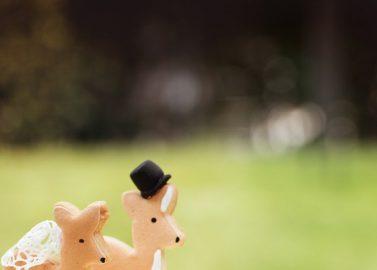 Bambi inspiriertes Hochzeitskonzept für die Kleinen